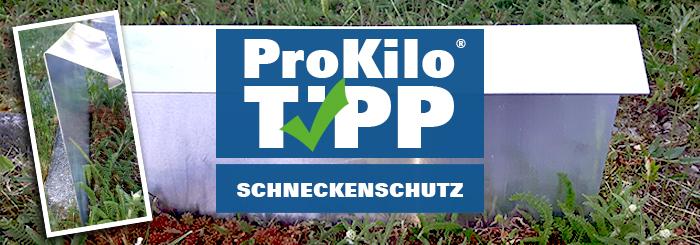 Schneckenschutz – Der ProKilo-Tipp für alle Gartenliebhaber!